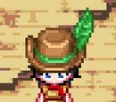 Hair Feather