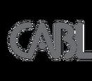 Cable Television companies in Hong Kong