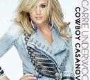 Cowboy Casanova (song)