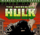 Hulk Visionaries: Peter David Vol 1 1