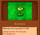 Rebirder