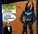 Batman Annual Vol 1 20/Images