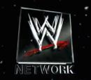 WWE Network (United States)
