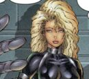 Sharon Carter (Heroes Reborn) (Earth-616)