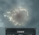 Sturmruf