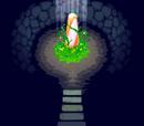 빛의 동굴