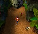 Livelli di Crash Bandicoot (Videogioco)
