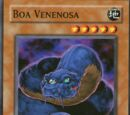Boa Venenosa