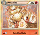 Arcanine (HeartGold & SoulSilver TCG)
