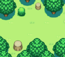 작은 숲 (구조대 던전)