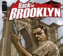 Back to Brooklyn Vol 1