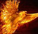 Phoenix Physiology