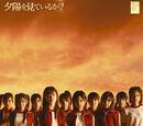 10 Senbatsu Members