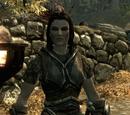 Skyrim: Towarzysze podróży