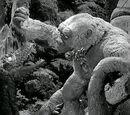Wąż jaskiniowy