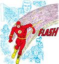 Flash 0003.jpg