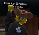 Burky Urchin