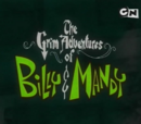 As Terríveis Aventuras de Billy e Mandy