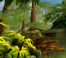 Foresta di Nabla
