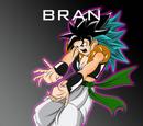 Bran (SSK)