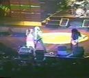 Palacio de los Deportes: 24/04/1993