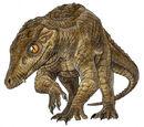 Mosasaurs
