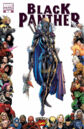 Black Panther Vol 5 7 70th Frame Variant.jpg