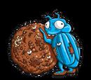 Dung Bug