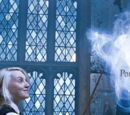 Mondo di Harry Potter