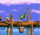 Levels in Donkey Kong Country 3: Dixie Kong's Double Trouble!