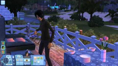 All in the Sims 3 Grants Creations