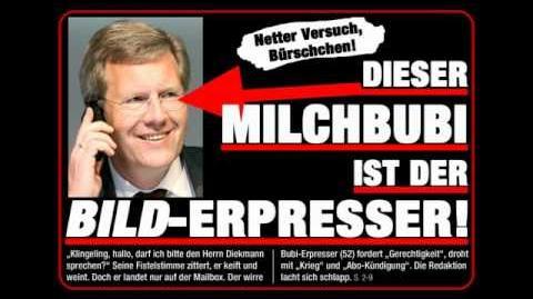 Christian Wulff ruft bei Kai Diekmann an (Satire)