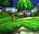 Locations in Tomba! 2: The Evil Swine Return