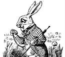 Por la madriguera del Conejo