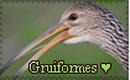 Gruiformes stamp.png