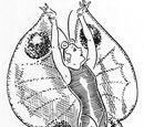 Weigel's Butterfly Costume