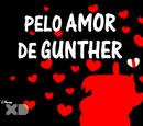 Pelo Amor de Gunther/Galeria