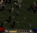 Ort aus Diablo II