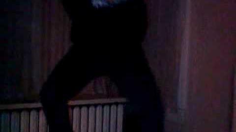 Stupid Monkey Dance