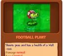 Football Plant