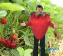 Strawberries! Bananas!