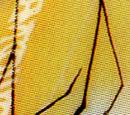 Natsu (Version X)