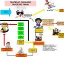 Direito Processual Penal - Rito Ordinário - Audiência