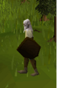 Wooden shield player.png