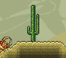 Monstruos del desierto
