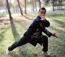 Pigua Zhang- Chop Hanging Palm: