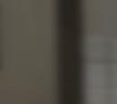 Skinny Spy