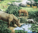 Oligocene Epoch