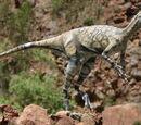 DW: Eoraptor