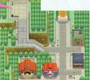 Starter Cities